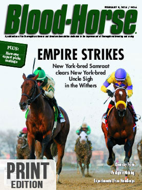 The Blood-Horse: Feb 8, 2014 Print
