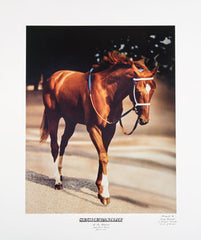 Secretariat: At the Belmont by Tony Leonard
