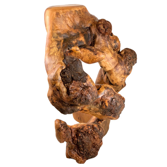 "Large Burl Sculpture - ""The Thinker"""