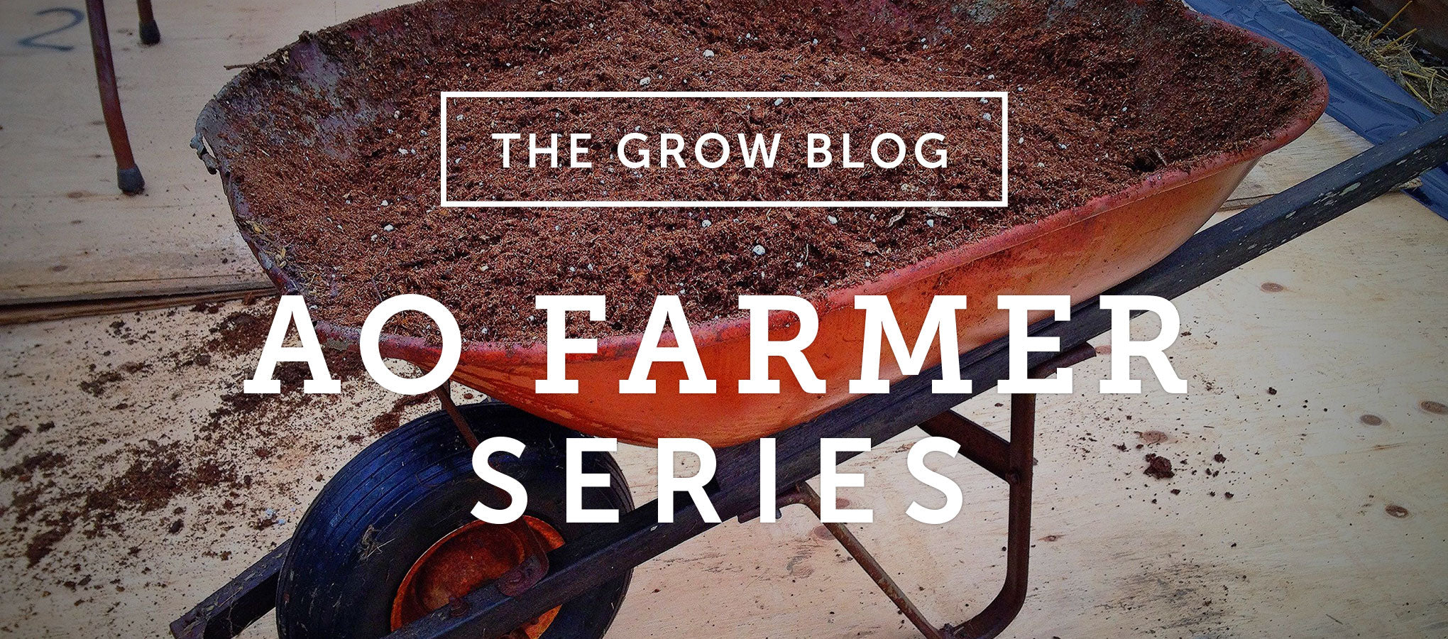 AO Farmer Series: Mix Your Own Potting Soil & Seeding 101