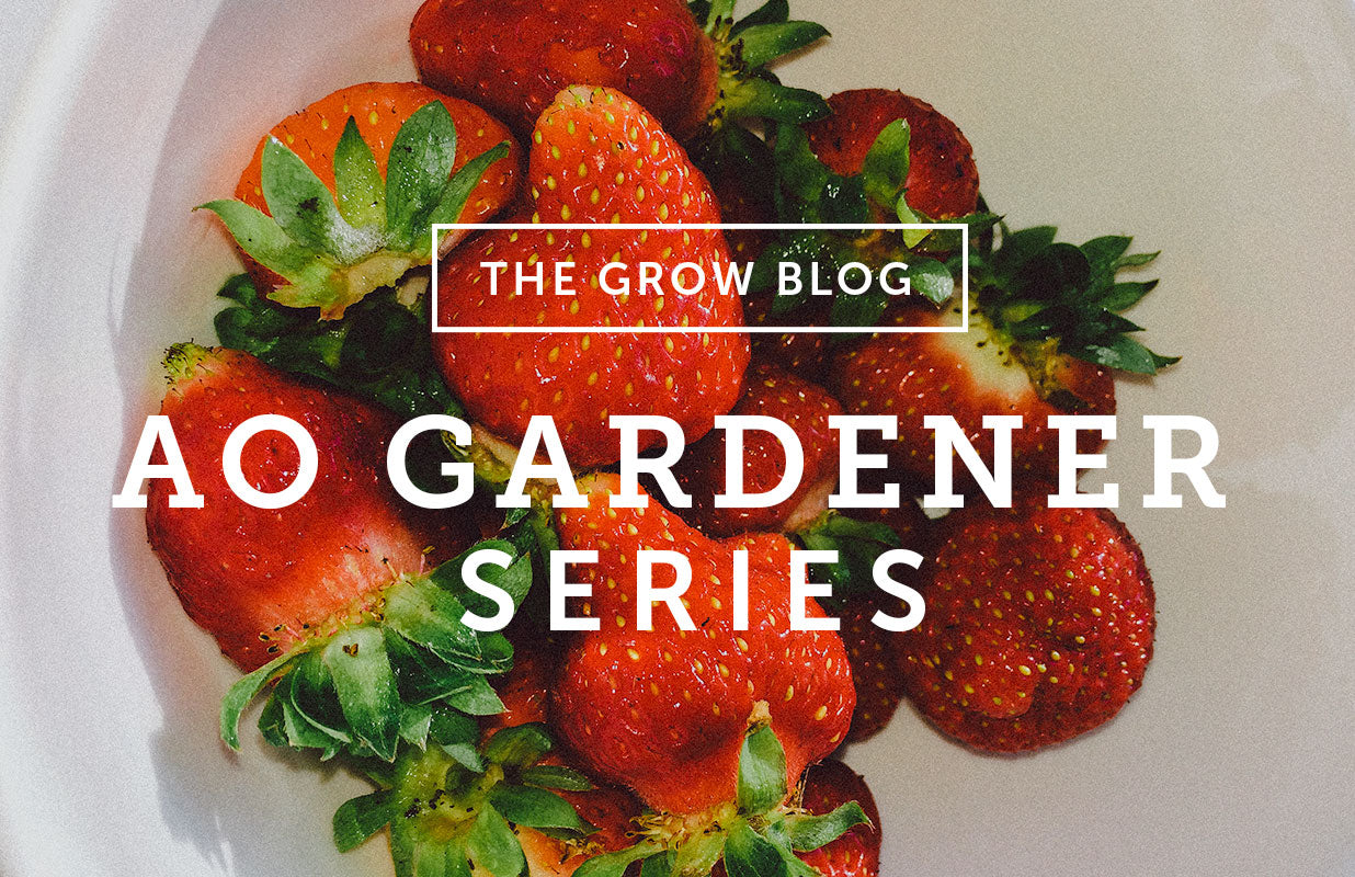 Ao Gardener Series: June Sweet June