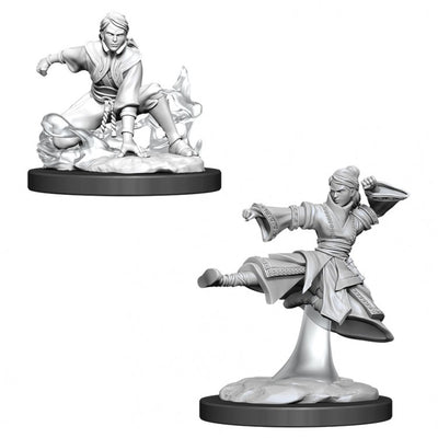 Nolzur's Marvelous Miniatures - Female Human Monk