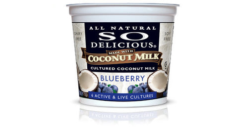 Blueberry Coconut Milk Yogurt