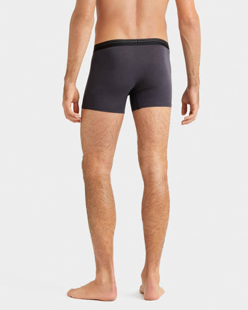 Everyday Essentials Boxer Trunk Iron  Setback image