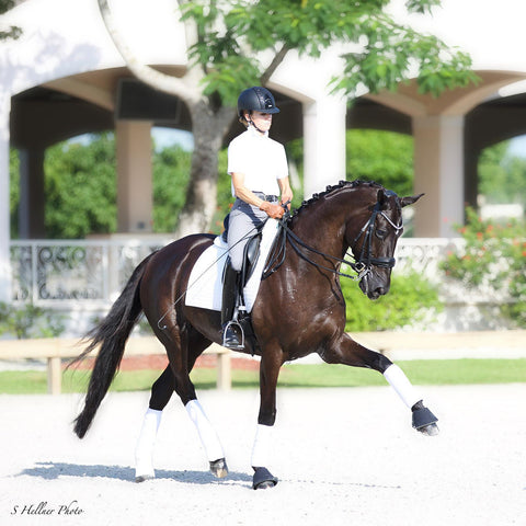Dressage Collections endorsement from Lisa Wilcox and her horse Honeymoon