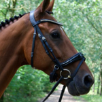 S5 Snaffle Nosebands by Bridle2Fit