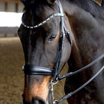 Bridle2Fit Fixings AKA Fittings Flat Weymouth or Double Bridle