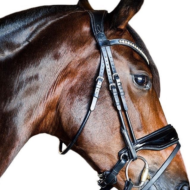 Bridle2Fit Fixings AKA Fittings Rolled Snaffle Bridle