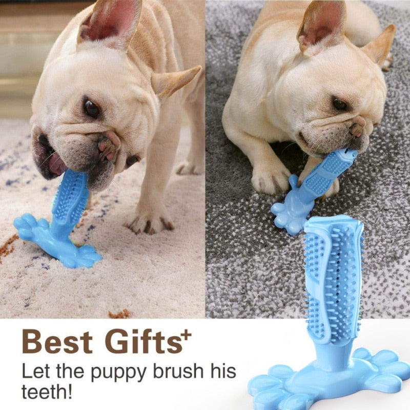 Load image into Gallery viewer, DOG-BRISTLE™ TOOTHBRUSH - planetadeals.com