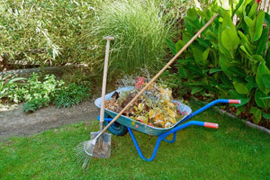 How to Prepare Your Lawn & Garden for Spring