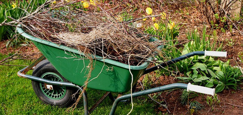 Spring Cleanup - Wheelbarrow and branches.
