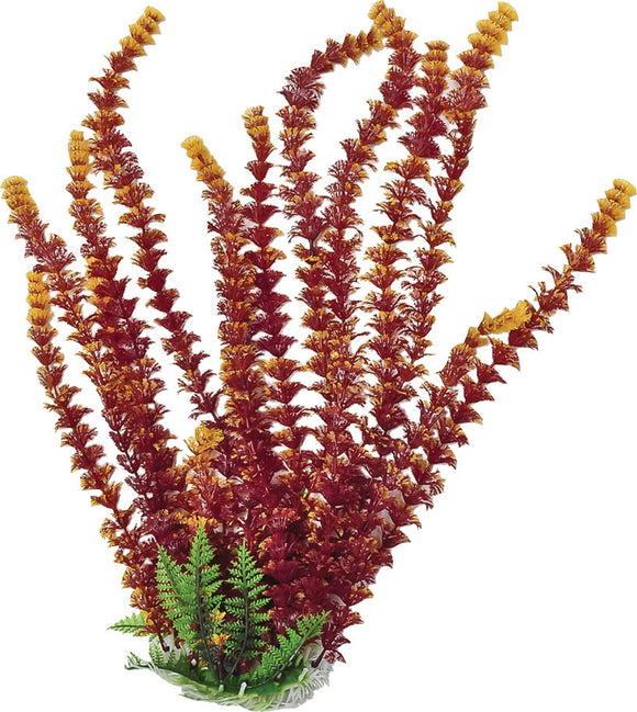 Aquatop Aquatic Supplies - Cabomba Fire Aquarium Plant With Weighted Base