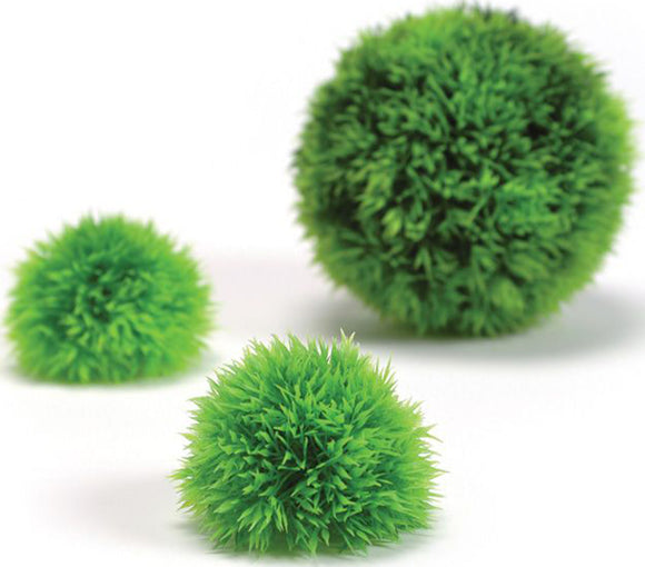 Oase - Aquatics - Bio Orb Topiary Ball Aqaurium Plant Set