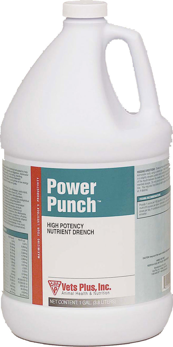 Vets Plus Probios    D - Power Punch Drench For Ruminants