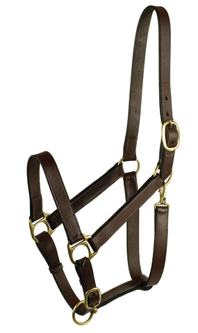 Halters & Leads: Leather