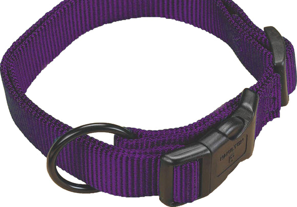 Hamilton Pet Company - Adjustable Dog Collar