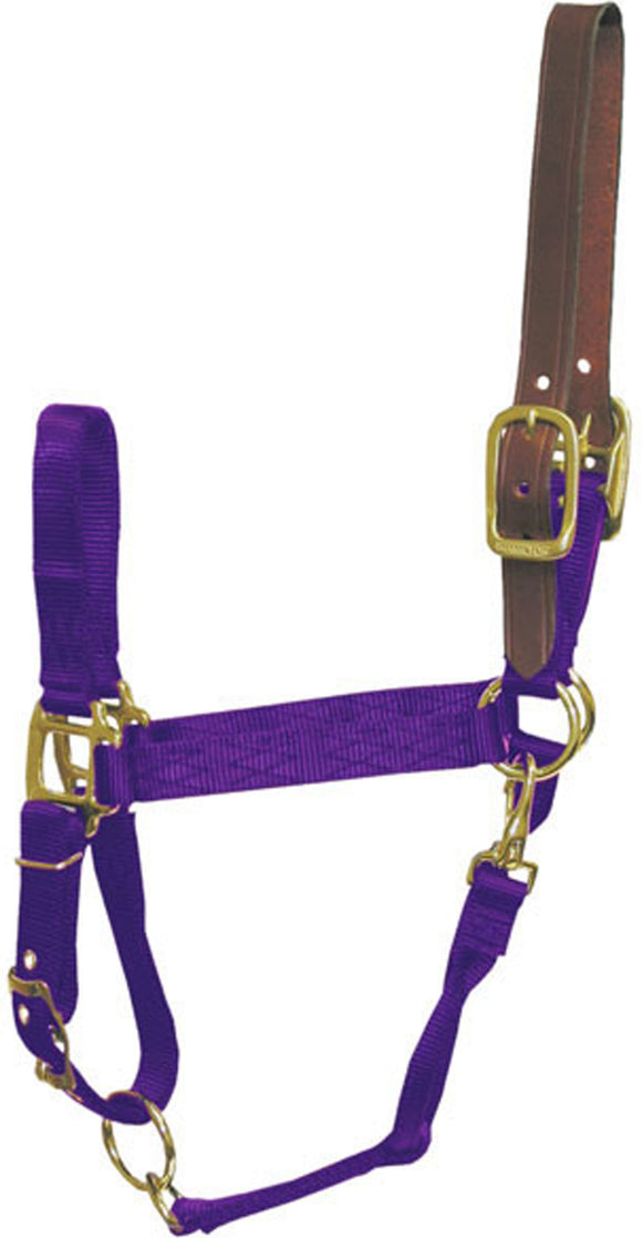 Hamilton Halter Company - Adjustable Horse Halter With Leather Headpole