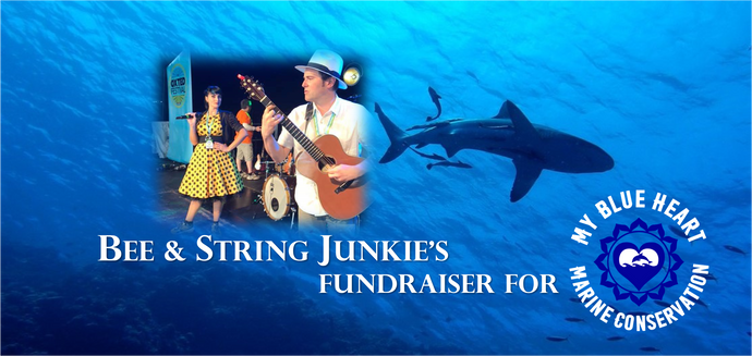 Bee & String Junkie Are Raising Money For My Blue Heart