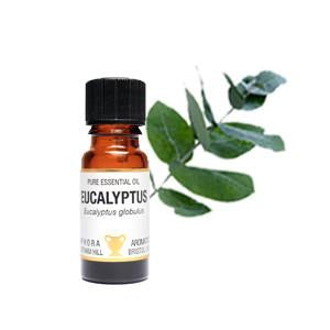 Eucalyptus Essential Oils - 10ml - My Green Heart