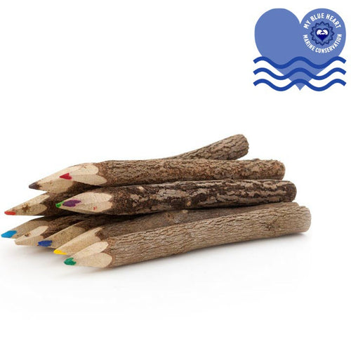 Bundle of 10 Twig Pencils - My Green Heart