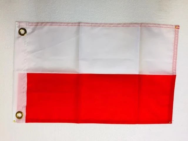 One Dozen Flags of All Nations & Countries 12x18 Inches with grommets Boat Flags Rough Tex ® Extreme International