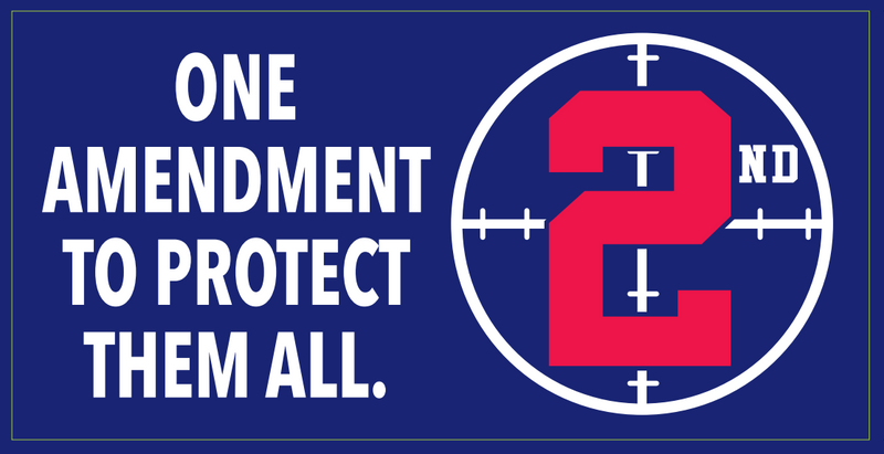 One Amendment To Protect Them All 2nd  - Bumper Sticker
