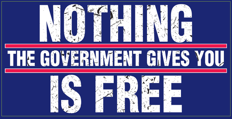 Nothing The Government Gives You Is Free - Bumper Sticker