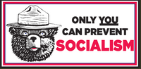 Only You Can Prevent Socialism  - Bumper Sticker