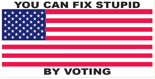 You Can Fix Stupid By Voting USA - Bumper Sticker