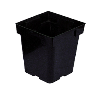 "5.5"" x 6"" Black Square Pot"