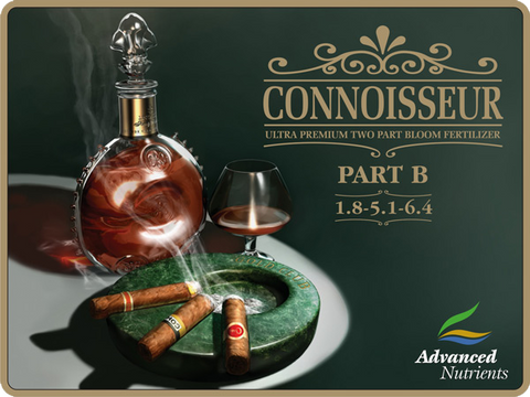 Connoisseur Bloom Part B 1 Liter