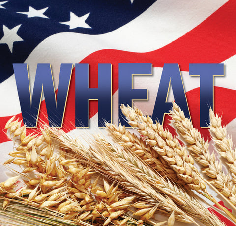 All Grain Kit American Wheat