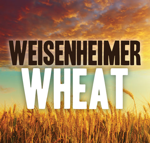 Weisenheimer Wheat Ale Extract Kit