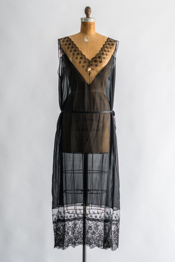 1920s Silk Chiffon and Lace Slip Dress - M/L