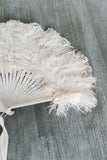 Antique Feather Fan