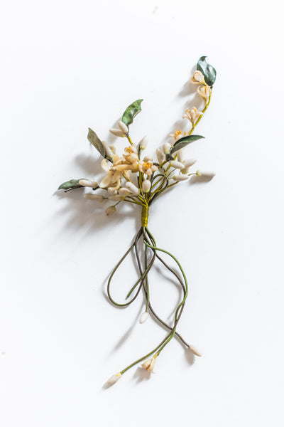 Antique Wax Orange Blossom Boutonnière