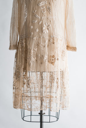 1920s Embroidered Tulle Lace Flapper Over Dress  - M