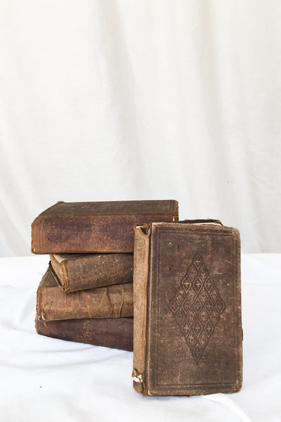 Antique Set of Old Bible Books
