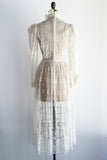Vintage Ivory Embroidered Net Dress - XS/S