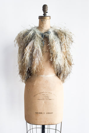1920s/30s Blue and Light Brown Ostrich Feather Capelet - One Size