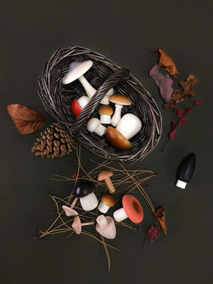 Forest Mushrooms Basket by Moon Picnic