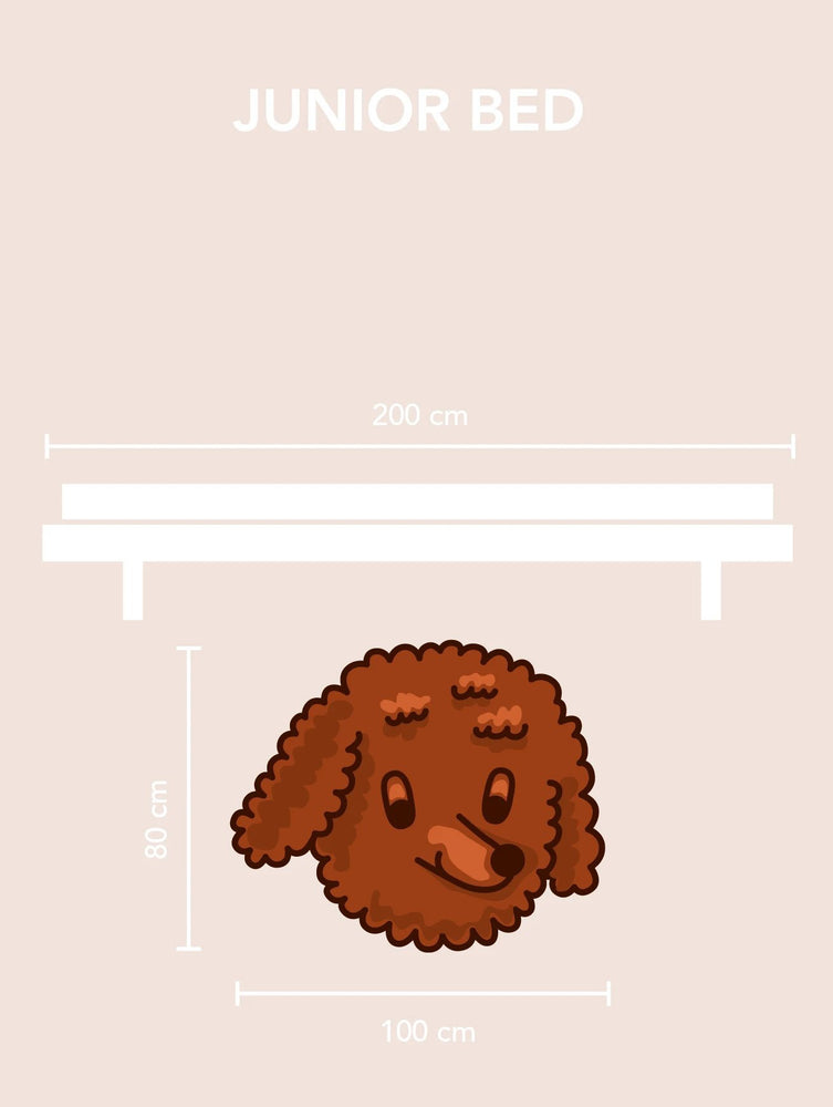 Load image into Gallery viewer, Tiny Dog Rug - Tinycottons X Maison Deux