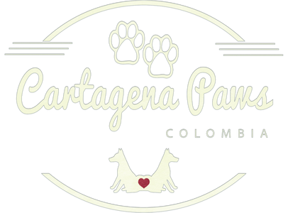 January Profit Recipient is Cartagena Paws
