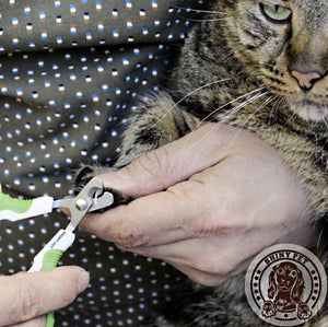 Pet Nail Clippers for Small Animals - Dogs, Cats, Birds, Rabbits *NEW*