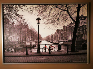 "Vilshult - Amsterdam (IKEA Pic) 55"" X 39.25"" Framed - USED ($25 Incl Tax)"