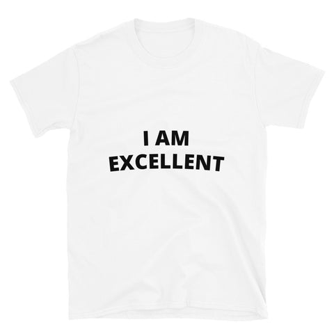 Positive Affirmation T-shirt  I Am Excellent
