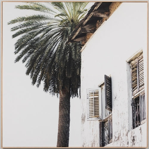 Palm Window Canvas print