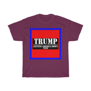 Letting America Down - Trump NOT 2020 - Decagon Unisex Tee