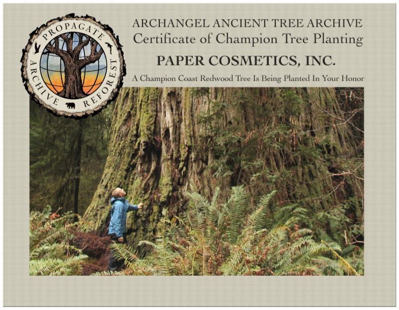 Support the mission of Archangel Ancient Tree Archieve with Paper Cosmetics Deodorant