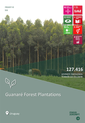 Guanare Forest